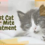 Best Cat Ear Mite Treatment