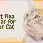 Best Flea Collar for Your Cat