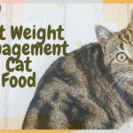 Best Weight Management Cat Food
