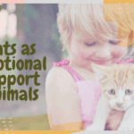 Cats as Emotional Support Animals