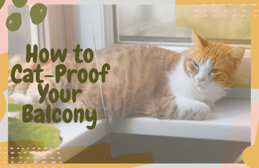 How to Cat-Proof Your Balcony