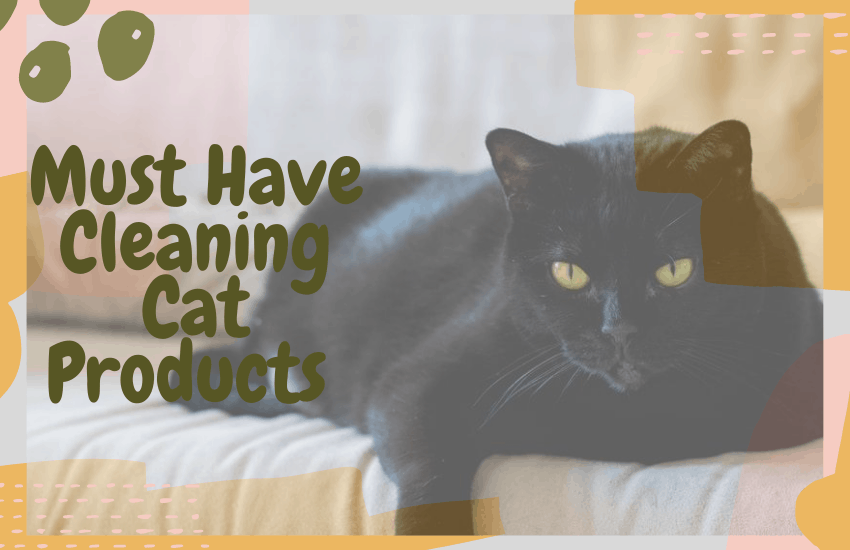 Must Have Cleaning Cat Products