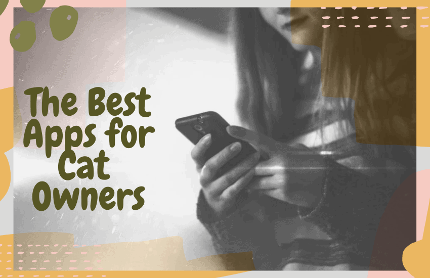 The Best Apps for Cat Owners