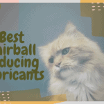 Best Hairball Reducing Lubricants