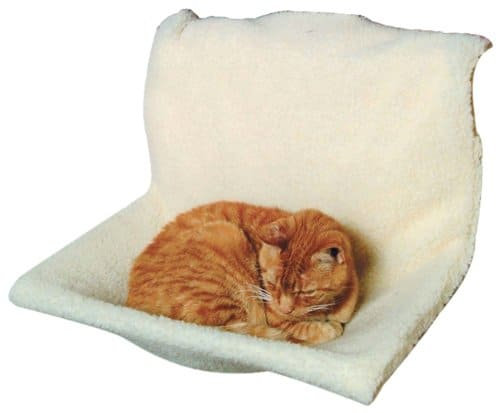 How To Choose The Best Heated Cat Bed Oliveknows