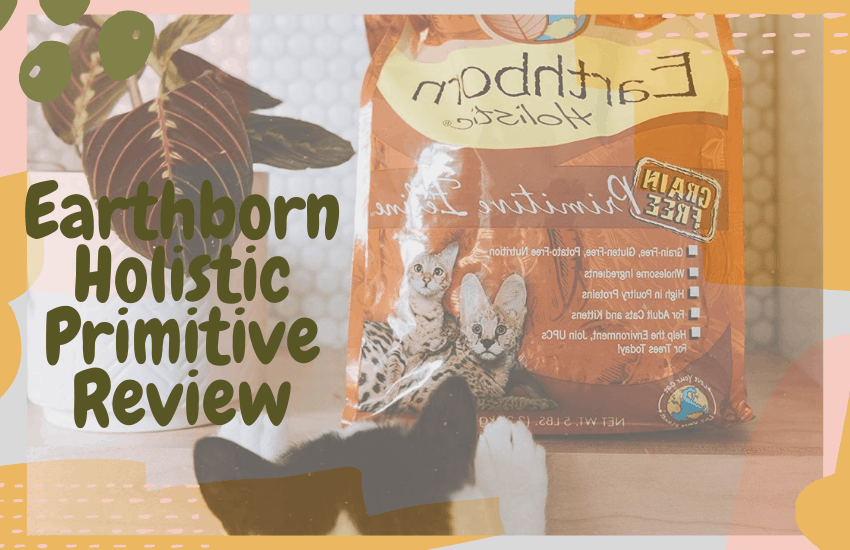 Earthborn Holistic Primitive Review
