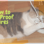 How to Cat Proof Wires