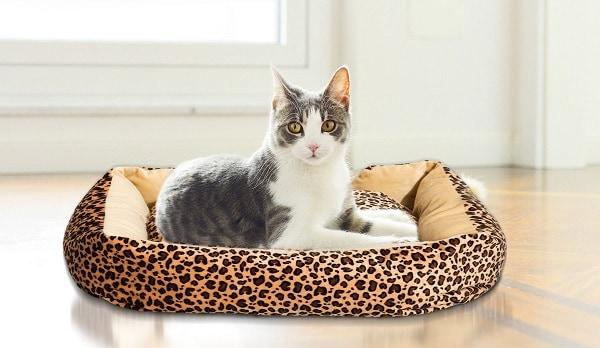 Pawhut-Cat-Heated-Bed
