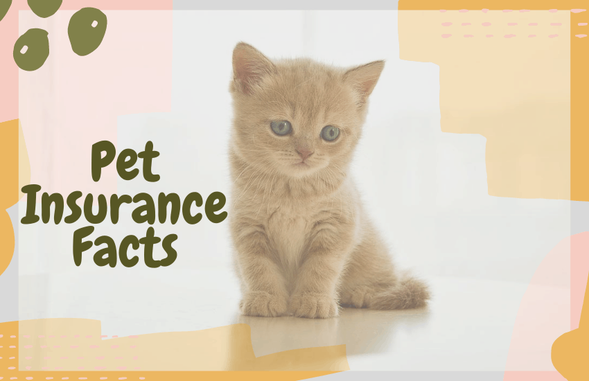 Pet Insurance Facts