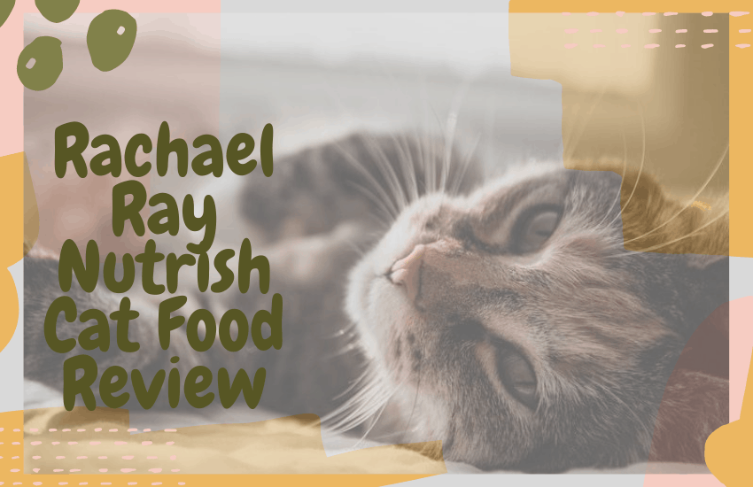 Rachael Ray Nutrish Cat Food Review
