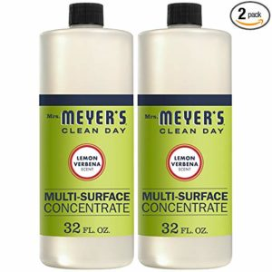 meyer's clean day