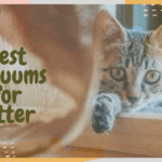 Best Vacuums for Litter