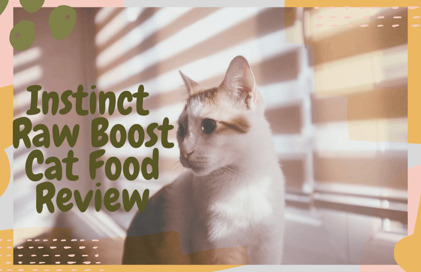 Instinct Raw Boost Cat Food Review