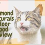 Diamond Naturals Indoor Food Review