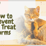 How to Prevent and Treat Worms