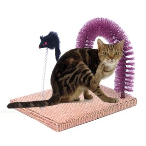 How to Stop Cats from Scratching the Carpet | OliveKnows