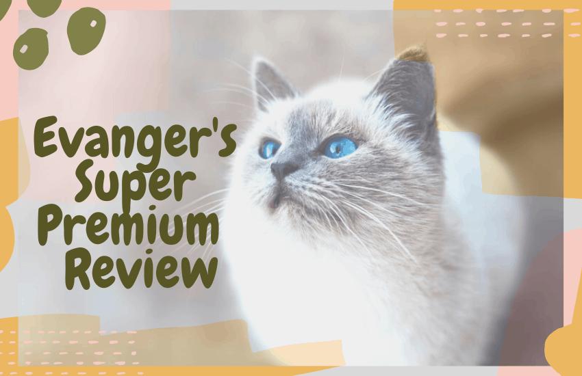 Evanger's Super Premium Review