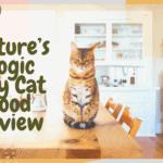 Nature's Logic Dry Cat Food Review