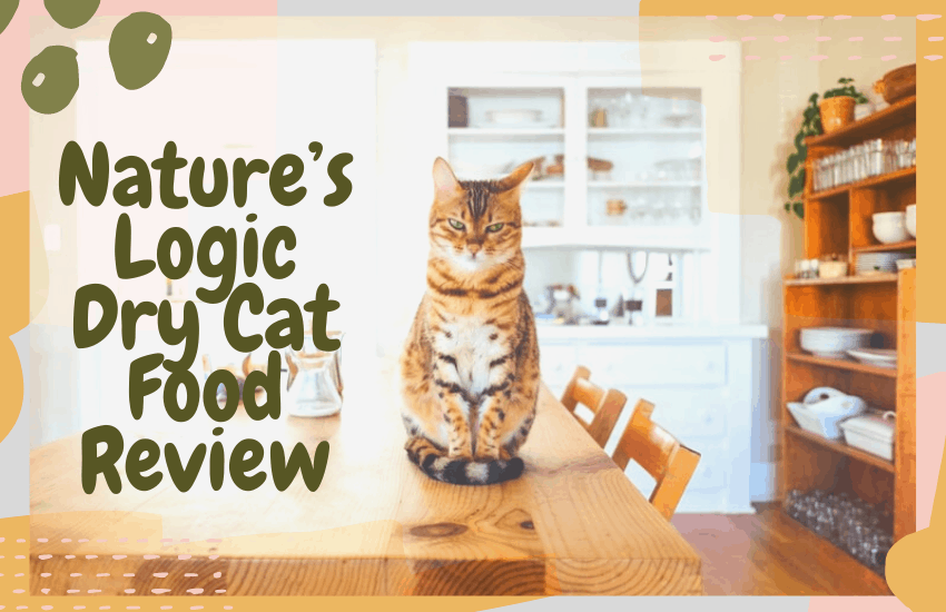 Nature's Logic Dry Cat Food Review