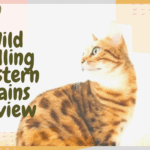 Wild Calling Western Plains Review