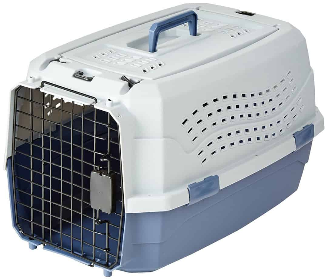 amazon basics cat carrier