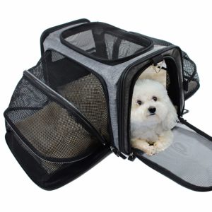 carrier for cats