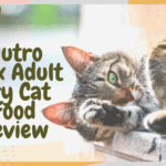 Nutro Max Adult Dry Cat Food Review