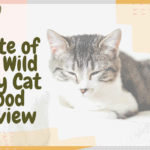 Taste of the Wild Dry Cat Food Review (1)