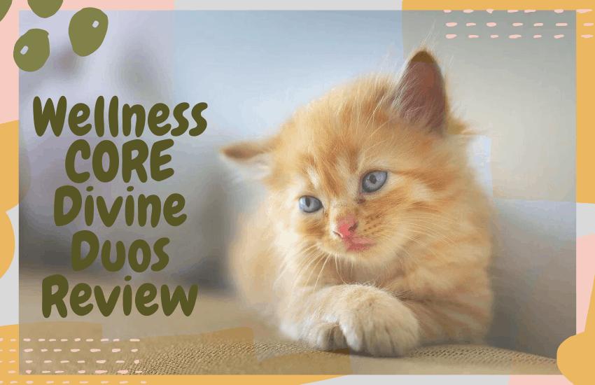 Wellness CORE Divine Duos Review