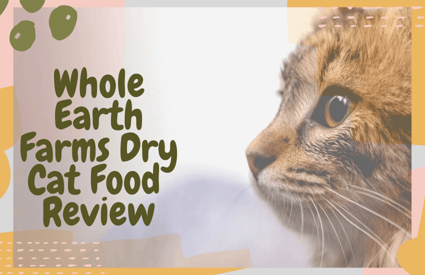 Whole Earth Farms Dry Cat Food Review
