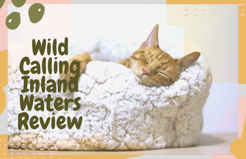 Wild Calling Inland Waters Review