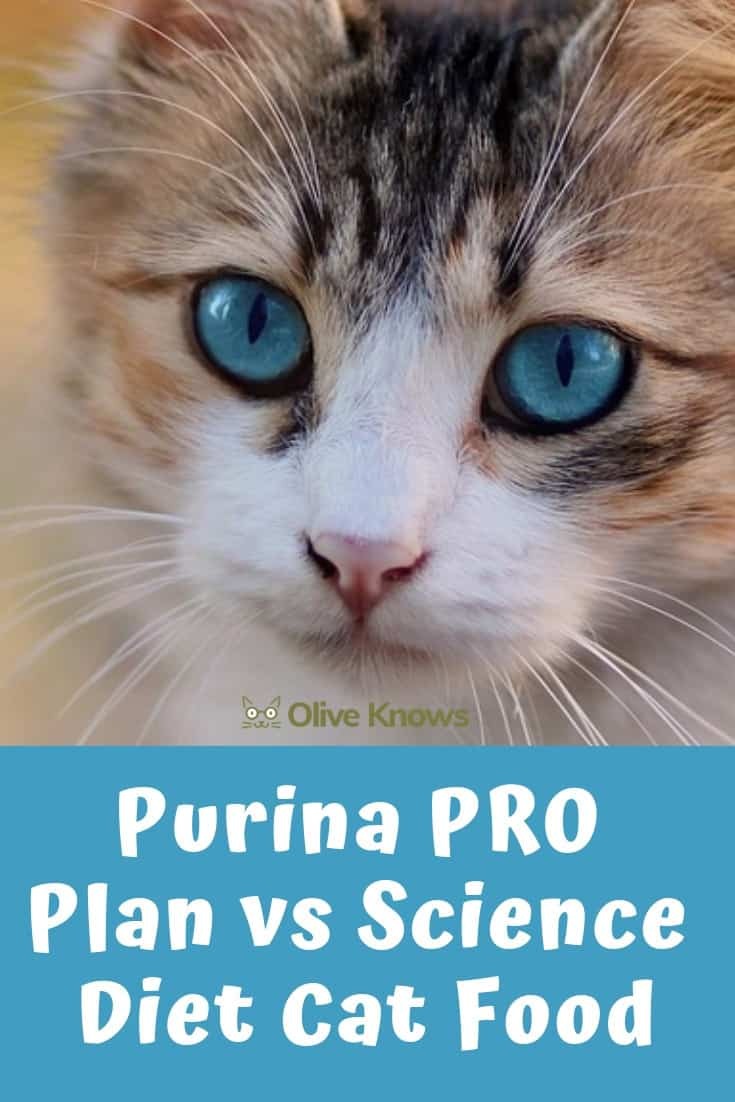 purina pro plan or science diet