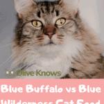 Blue-Buffalo-vs-Blue-Wilderness