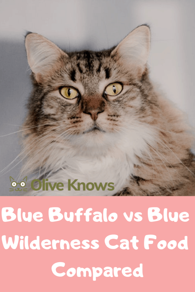 Blue-Buffalo-vs-Blue-Wilderness