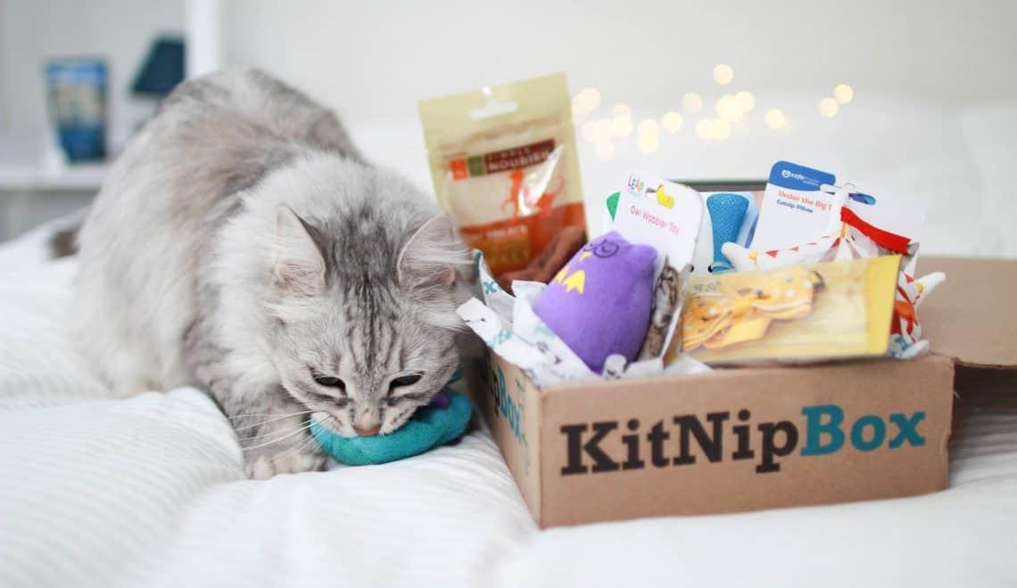Cat-Kitnipbox-Gift-Subcription