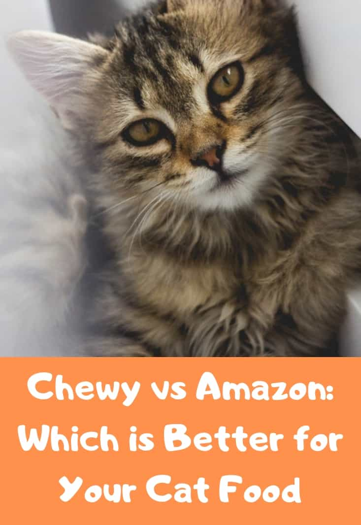 Chewy-vs-Amazon-Pet-Cat-Food