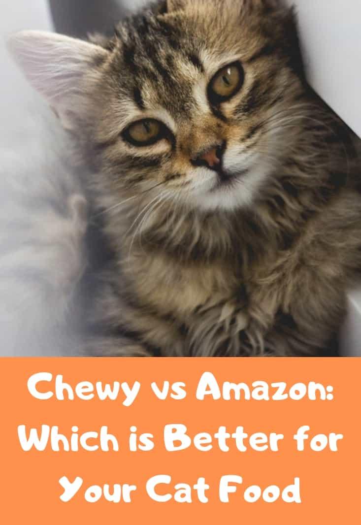 Chewy-vs-Amazon-Pet-Cat-Food