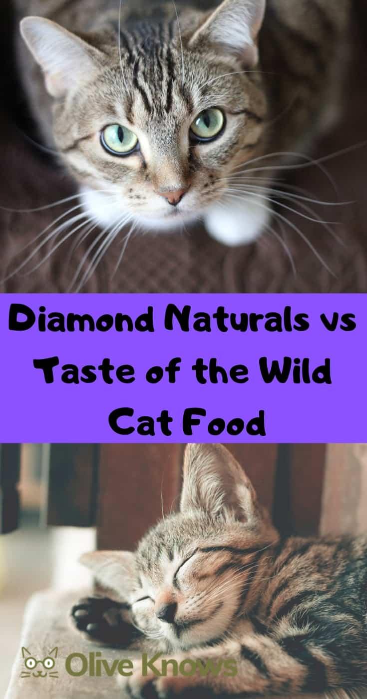 Diamond Naturals vs Taste of the Wild Cat Food