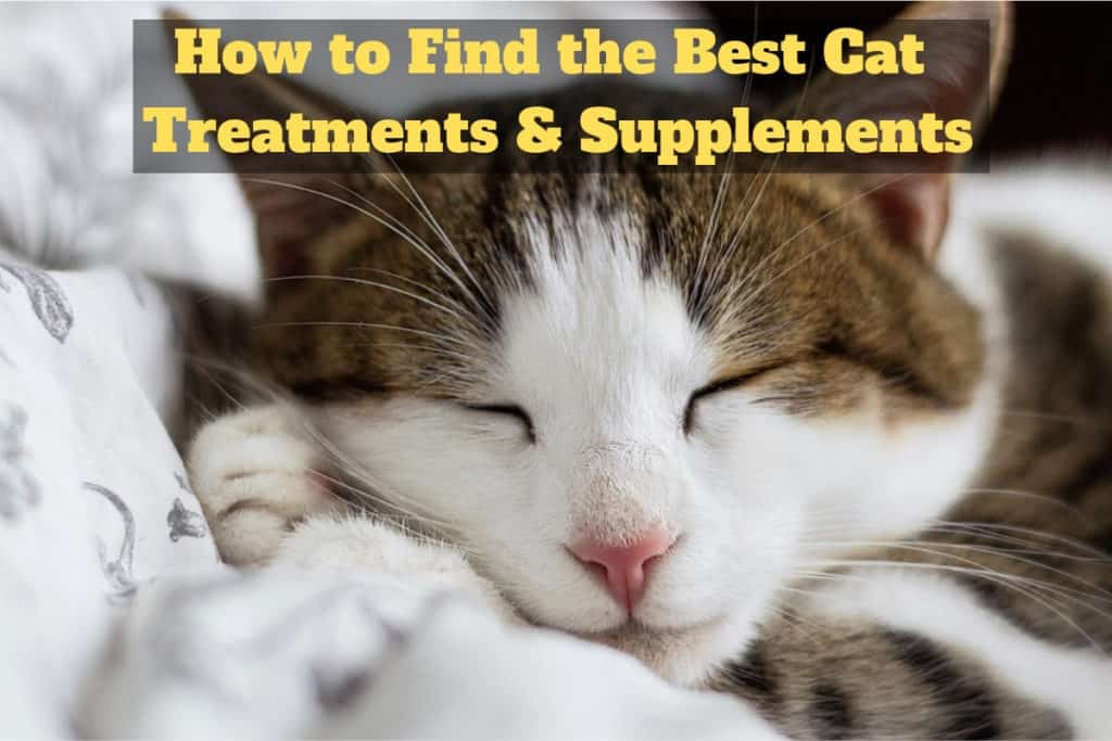 Cat Treatments Supplements