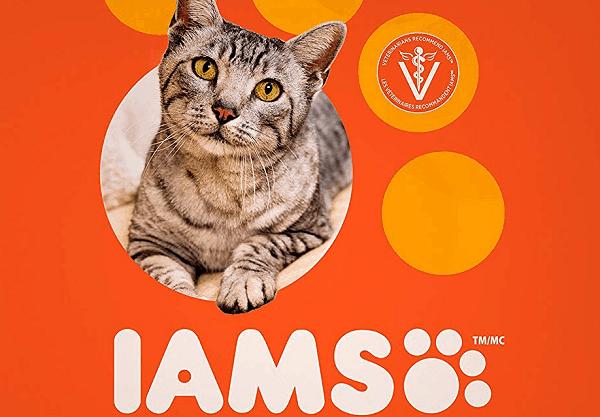 Iams-Cat-Food-Brand