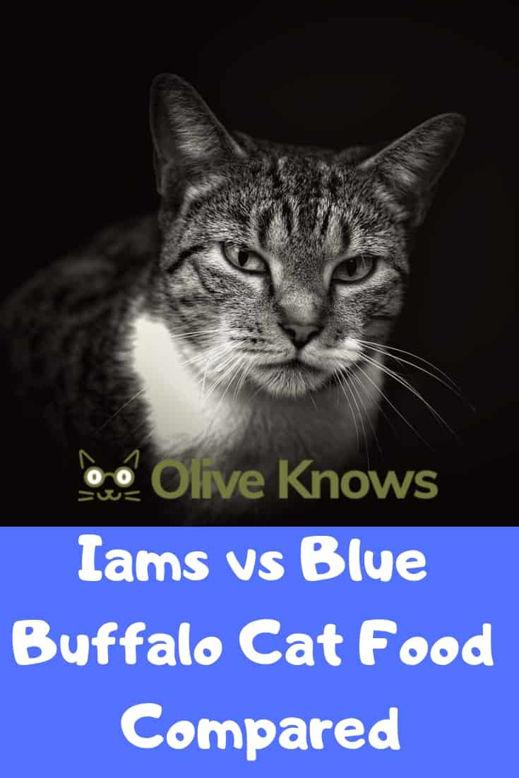Iams-vs-Blue-Buffalo-Cat-Food-Compared-2