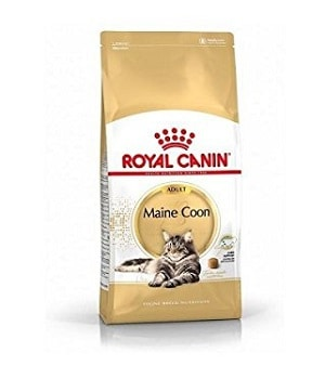 Royal-Canin-Cat-Food-Maine-Coon
