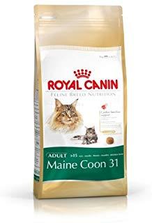 Royal-Canine-Maine-Food