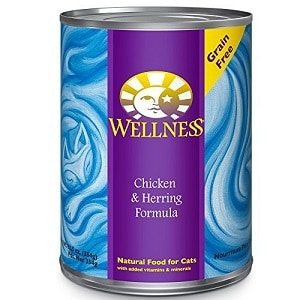 Wellness-Complete-Health-Grain-Free-Wet-Cat-Food