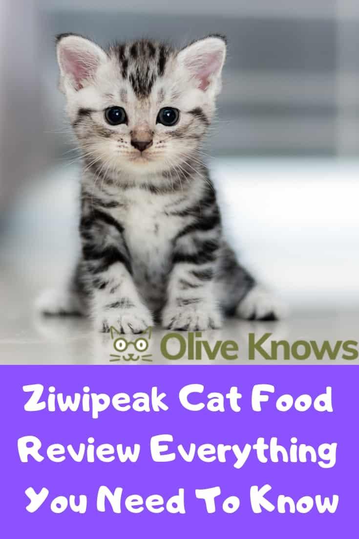 Ziwipeak Cat Food Review
