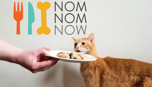 nomnomnow-fresh-cat-food