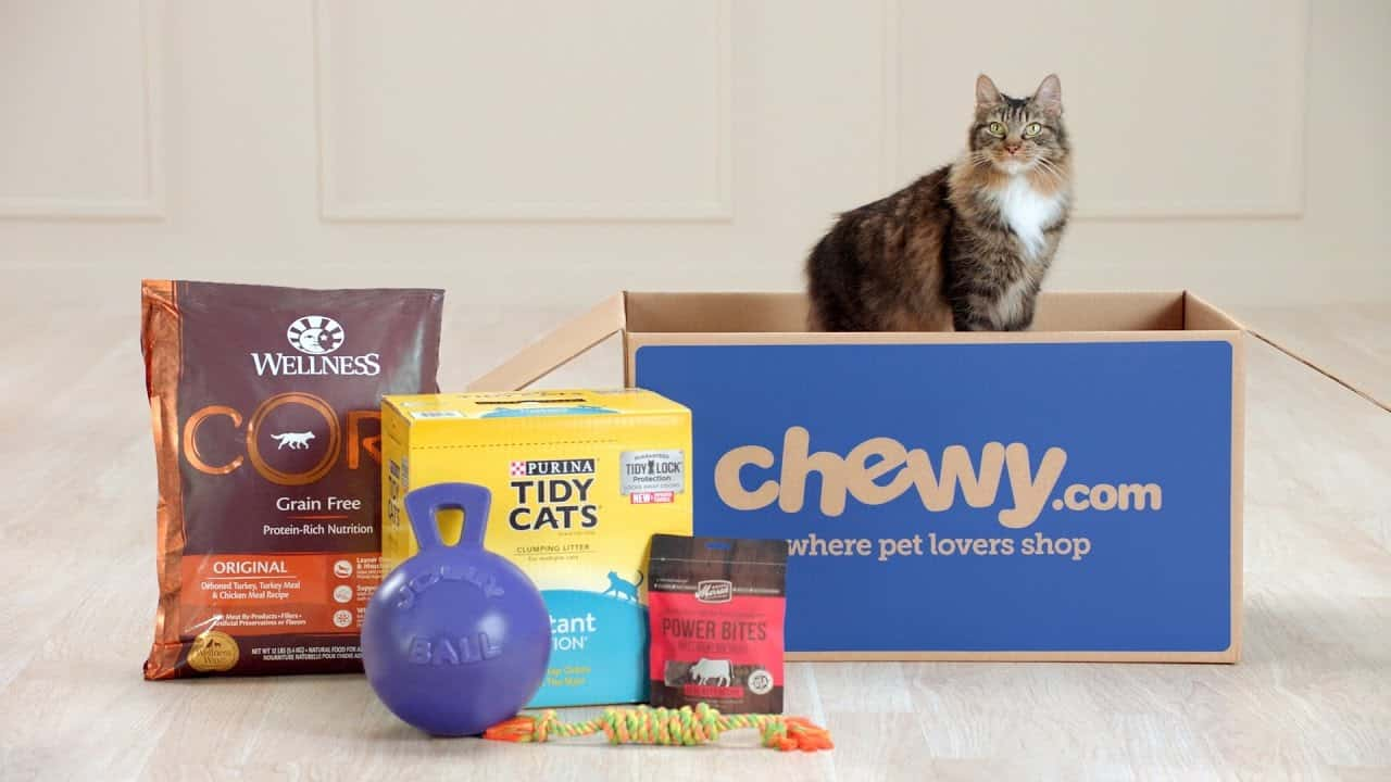 Chewy-Cats