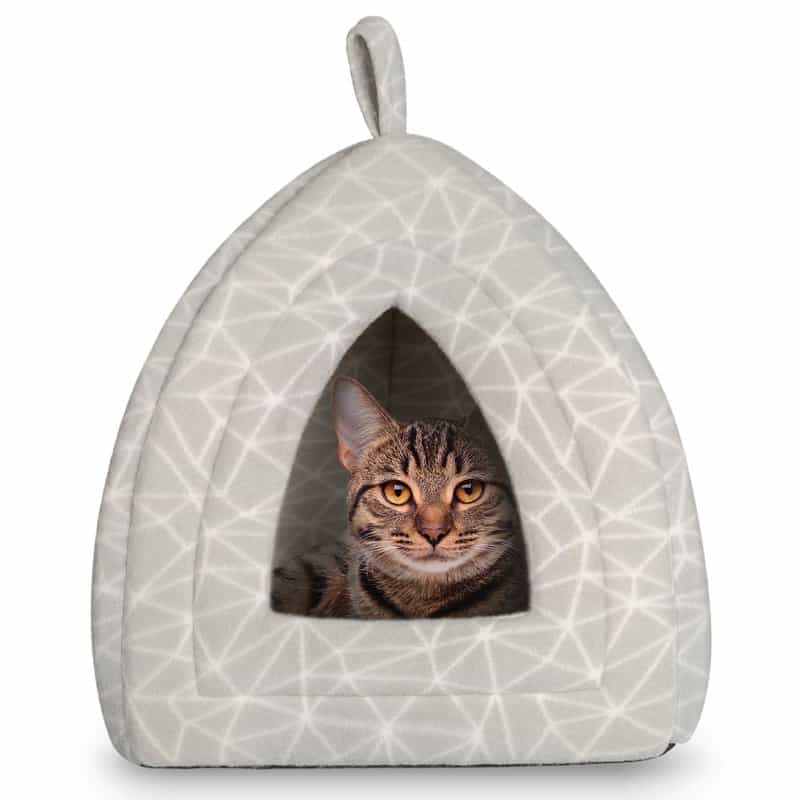 Cat house Hollypet