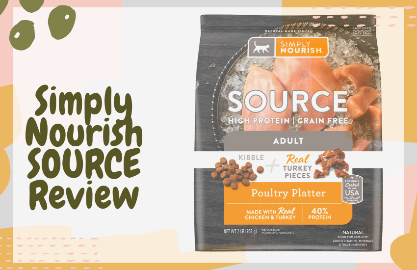 Simply Nourish SOURCE Review
