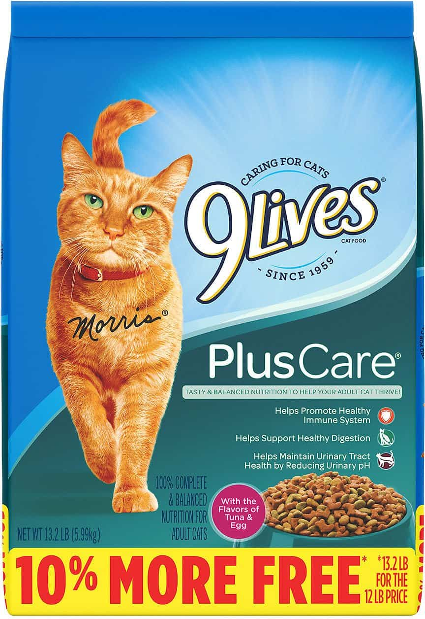 9 Lives Plus Care Dry Cat Food | Chewy